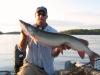 "Pete 46"" buck tail"