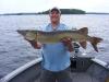 """Pete 44.5"""" figure 8 buck tail"""